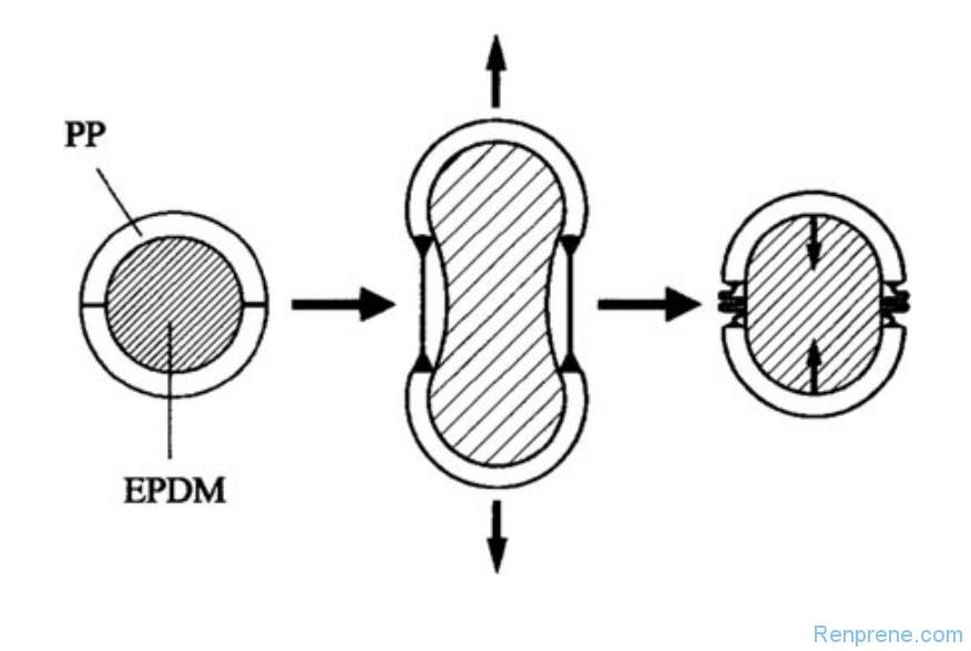 对热塑性硫化橡胶TPV机械性能的误解