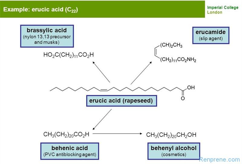 油酸酰胺和芥酸酰胺在塑料和热塑性弹性体中的应用