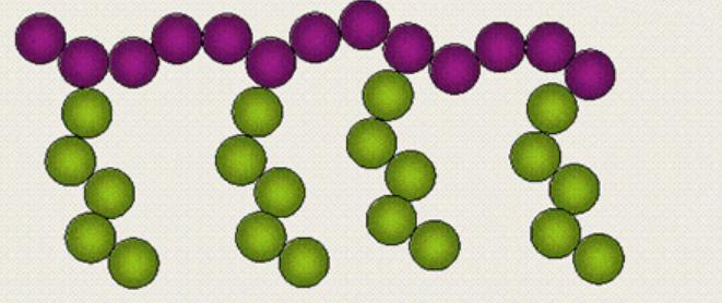 聚合物的接枝改性技术简介
